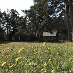 Aussengelände im Freizeitheim Gustavs Sommargård in Schweden