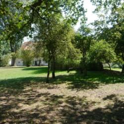 Der grüne Garten am Haus Burlage in Deutschland.