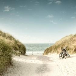 Der Weg durch die Dünen hin zum Meer auf der ostfriesischen Insel Langeoog beim barrierefreien Gruppenhaus Kajüte.