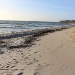 Das Freizeitheim für Gruppenreisen Ristingegaard liegt am Meer in Dänemark.