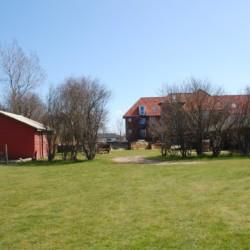 Eine große Wiese am Freizeithaus Solgarden Efterskole in Dänemark.