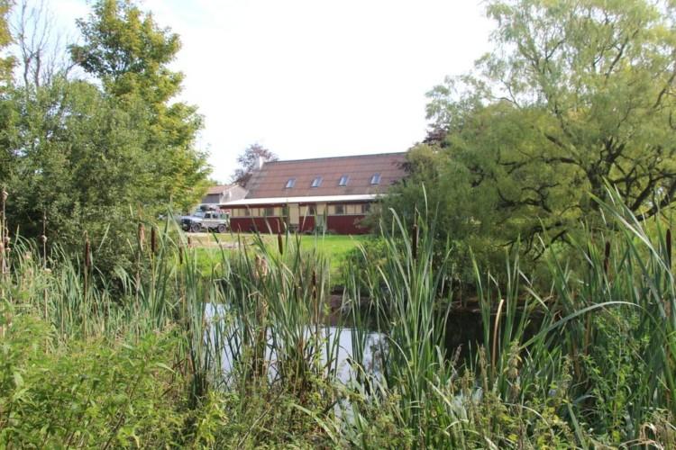 Teich am Freizeithaus Skovly Langeland in Dänemark.