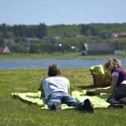 Der See mit Wiese am Gruppenhaus Virksund in Dänemark.