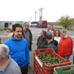 Beim Besuch der Olivenpresse des Ortes durften wir sogar das frisch gepresste Olivenöl probieren.