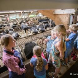 Ausflug vom holländischen Gruppenhaus Beuk für berhinderte Menschen