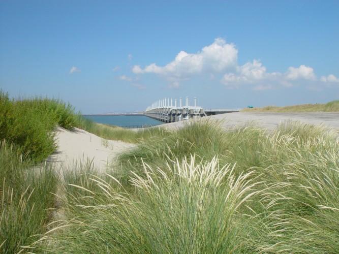 Strand und Meer in der Nähe des Gruppenhotels KOM! in den Niederlanden.