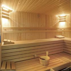Sauna im rolligerechten Handicaphaus Het Keampke Meidoorn