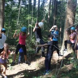 Klettern im Wald im niederländischen Gruppenhaus de Repelaerhoeve am Waldrand.
