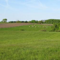 Spielwiese und Felder nahe am Gruppenhaus Tygegården in Schweden.