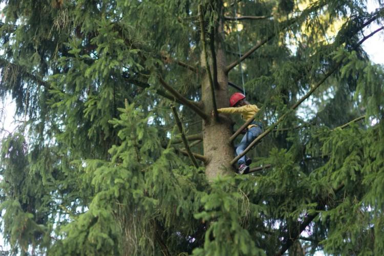 Kletterpark im Wald am deutschen Gruppenhaus Fuchsbau für Kinder und Jugendfreizeiten.