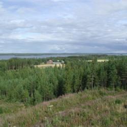 Wald und See am finnischen Gruppenhaus Vanamola für Kinder und Jugendfreizeiten.