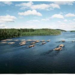 Der See am Gruppenhaus Vanamola für Kinder und Jugendfreizeiten in Finnland.