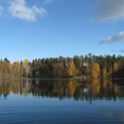 Badesee und Wälder am Freizeitheim Vanamola in Finnland.