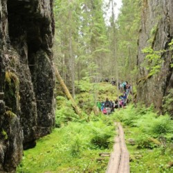 Waldwanderung am finnischen Gruppenhaus Vanamola für Kinder und Jugendfreizeiten.
