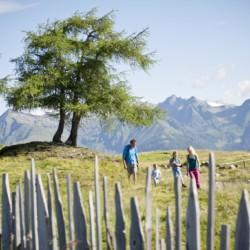 Wandern und Natur am italienischen Freizeithaus Plonerhof in Südtirol.