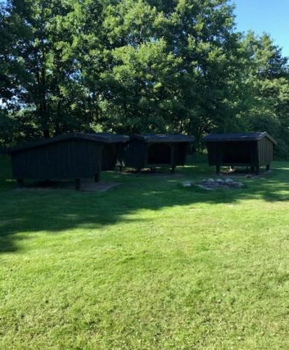 Außengelände des dänischen Freizeitheims Skovhuset für christliche Kinder- und Jugendgruppen