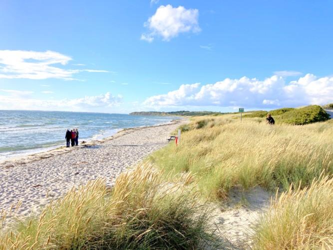 Strand in der Nähe des dänischen Gruppenhauses Skovly Langeland auf der Insel Langeland