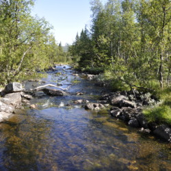Freizeitheim in Norwegen mit Badestelle Hallingdal
